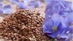 Лен, семена: отзывы, применение в народной медицине, рецепты