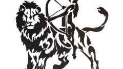 Лев-мужчина, стрелец-женщина: совместимость в любви