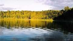 Линево - озеро (омская область), где можно хорошо отдохнуть
