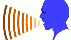 Лингвист - это... Раздел языкознания - лингвистика