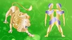 Любовная совместимость мужчины-близнеца и женщины-льва