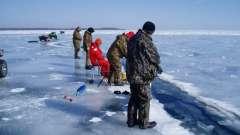 Ловля окуня в марте со льда