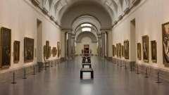 Лучшие музеи мадрида и их бесценные сокровища