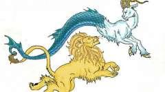 Львы и козероги. Совместимость знаков гороскопа