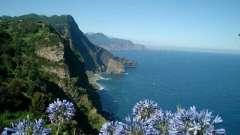 Мадейра. Отзывы туристов об этом цветущем острове