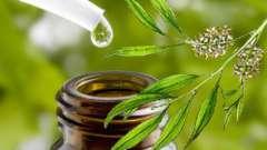 Масло чайного дерева и его уникальные свойства