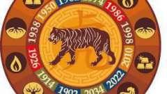 Мужчина тигр-дева: характеристика знака, совместимость в любви и браке, деловые качества