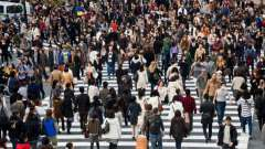 Население петербурга: численность, состав, распределение