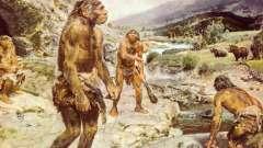 Неандерталец - это... Древние люди - неандертальцы