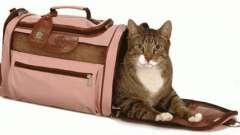 Необходимый атрибут хозяйки пушистой мурлыки - переноска для кошек