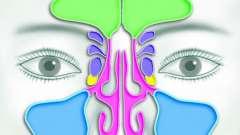 Нос: придаточные пазухи носа. Кт придаточных пазух носа