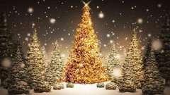 Новогодние загадки с ответами: про елку, деда мороза и многое другое