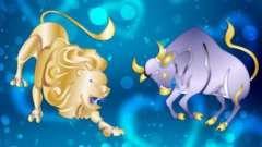 О чем нам шепчут звезды? Астрологическая совместимость льва и тельца