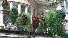 Оформление балкона: интересные идеи и практические советы