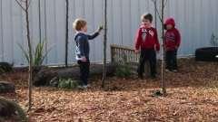 Оформление участков детского сада в летний период