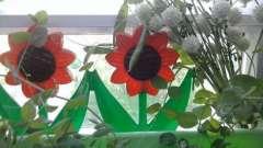 Огород на окне в детском саду: оформление (идеи)