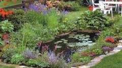 Оригинальный и красивый садовый участок – оформление своими руками