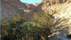 Отдых в октябре в тунисе: отзывы путешественников