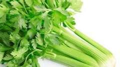 Овощная диета: блюда из сельдерея для похудения