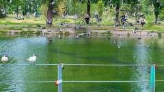 Парк урицкого - казань по праву гордится чудесным местом отдыха и развлечений