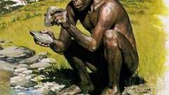 Первобытные люди. Древнейший человек: рост, внешность, основные навыки и занятия