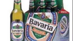 Пиво «бавария» – гордость голландии
