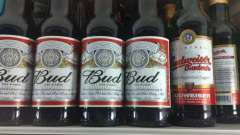 Пиво bud: история возникновения и современность