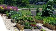 Планировка сада и огорода и приусадебного участка