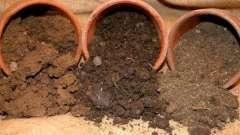 Почва суглинистая: свойства, достоинства, недостатки, растения