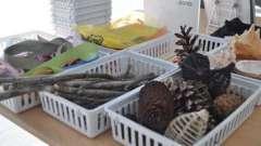 Поделки из природного материала в детском саду: интересно и увлекательно