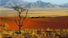 Положение африки относительно других материков и океанов, островов, заливов, проливов. Каковы особенности географического положения африки?