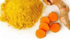 Польза и вред куркумы как лекарственного средства