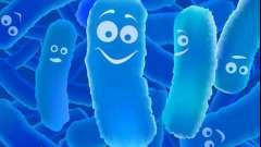 Пробиотики для детей: названия. Список лучших пробиотиков для детей