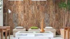 Пробковое покрытие для стен: виды и особенности монтажа