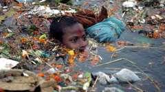 Проблема мусора. Экологическая проблема мусора