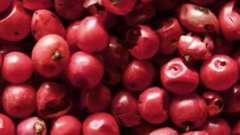 Розовый перец: свойства, особенности, применение