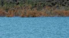 Рыбалка в магнитогорске: рыбные места