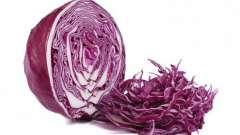 Салат из синей капусты - вкусное и полезное блюда