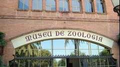 Самые популярные музеи барселоны