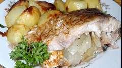 Сазан: как приготовить рыбу различными способами