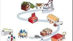 Сферы человеческой деятельности. Что такое производство?