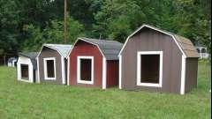 Собачьи будки - основы конструкции, фото