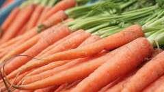 Сок морковный: полезные свойства и противопоказания, советы диетолога