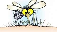 Сонник: к чему снится комар