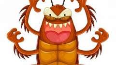 Сонник: много тараканов - к чему снится?