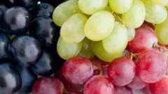 Сонник: снился виноград - к чему?