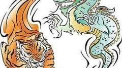 Совместимость дракон и тигр. Любовь и брак