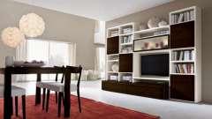 Современные стенки для зала: виды и особенности