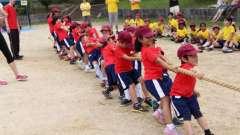 Спортивный досуг в старшей группе детского сада