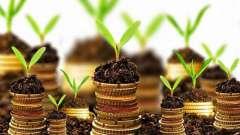 Стоит ли брать кредиты в 2014 году? Сбербанк - все кредиты
